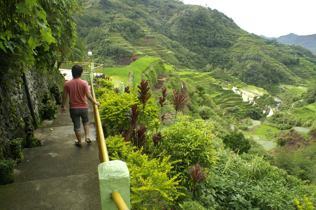 banaue rice terraces how to get there